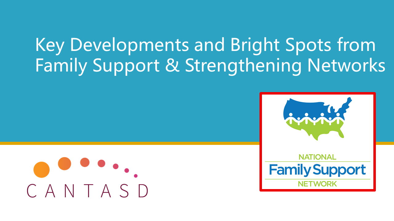 Key Developments and Bright Spots from Family Support & Strengthening Networks (This link opens in a new window)
